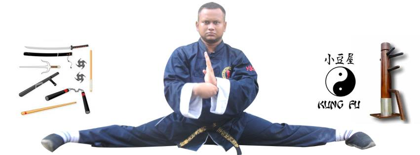 Self Defense Master - Chinese Kung Fu Wushu School