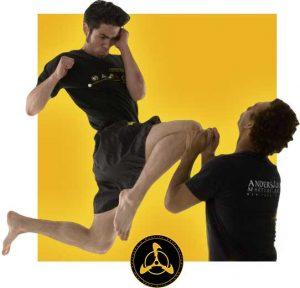 Best Kung Fu School in USA